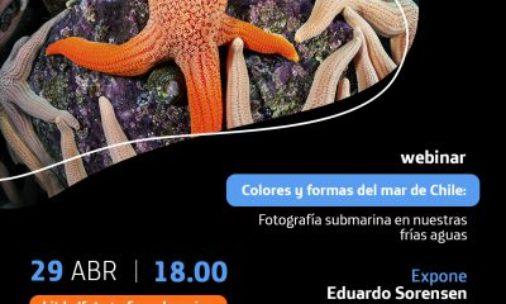 Webinar: Colores y formas del mar de Chile